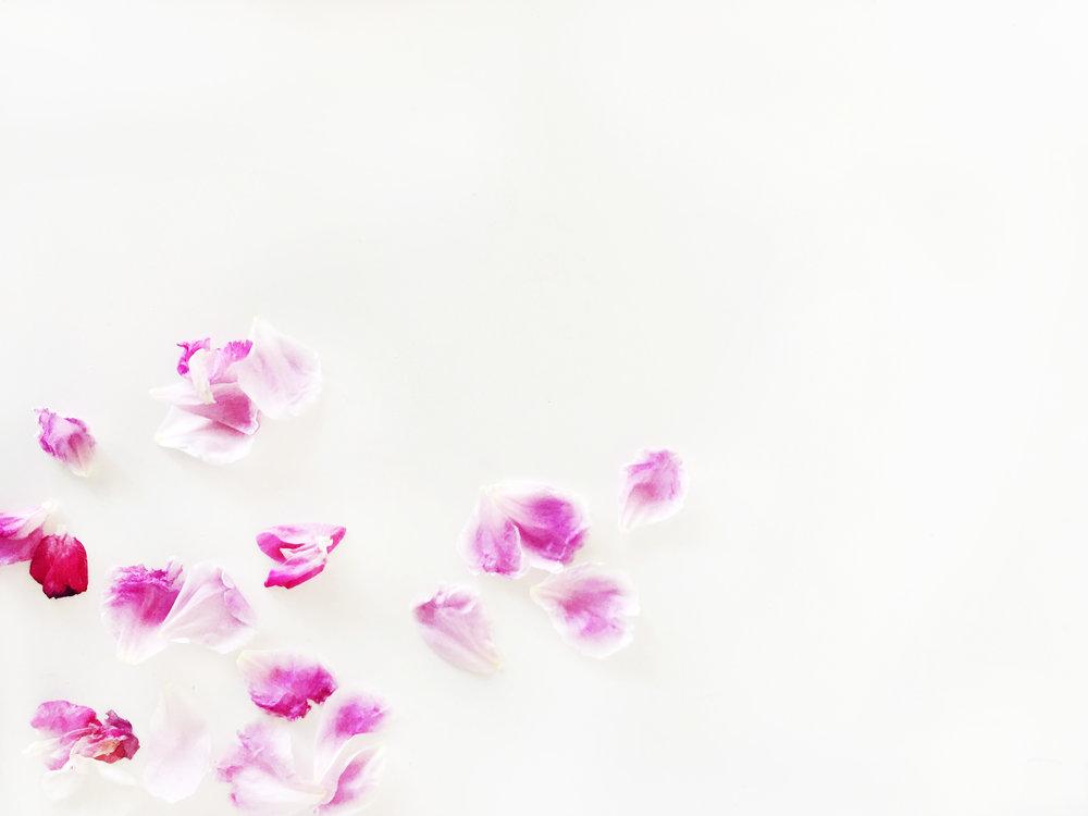 CC_Floral_H8.jpg