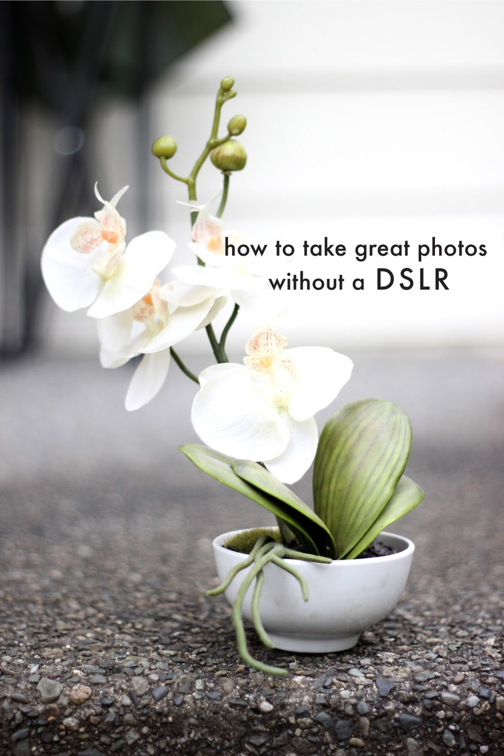 How-to-great-photos-without-DSLR2.jpg