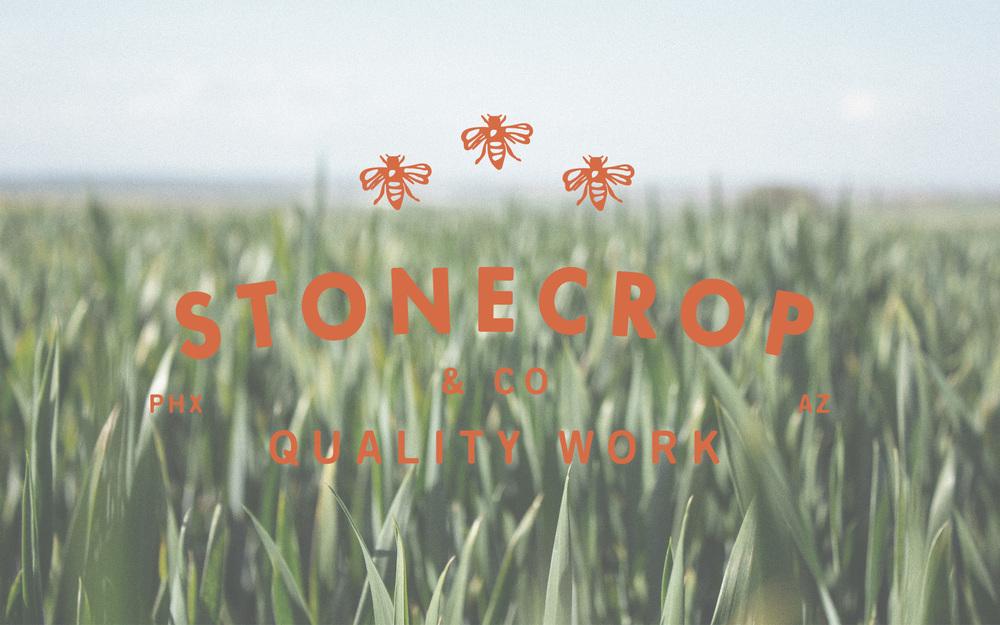 Stonecrop_1.jpg