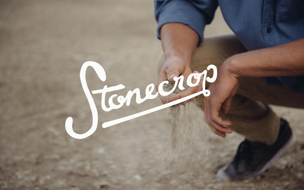 Stonecrop_5.jpg