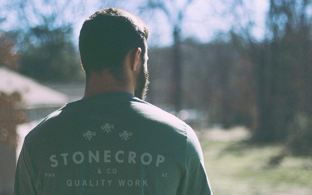 Stonecrop_6.jpg