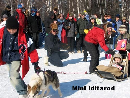 IditarodPic1.jpg