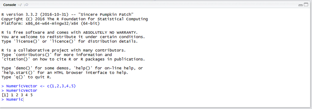 numeric-vector-written-out-to-r-console.png
