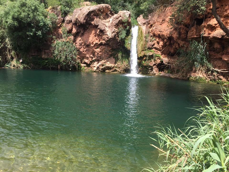 May Ayahuasca Retreat — Love Heal Forgive