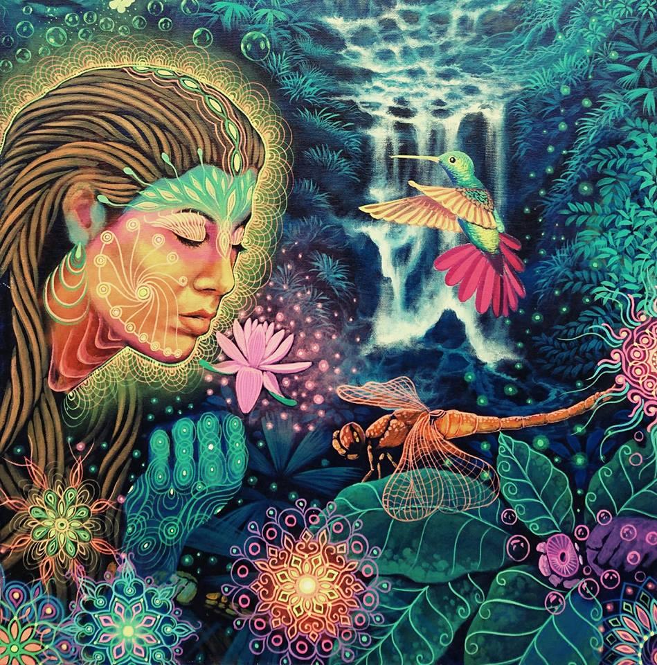 Where to drink Ayahuasca — Love Heal Forgive