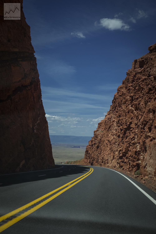 road line.jpg
