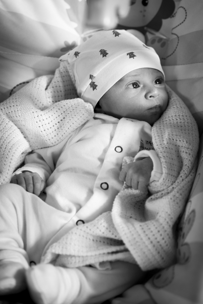 Coralie 8 days old (1 of 2)-2.jpg