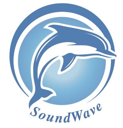 Soundwave logo copy.jpg