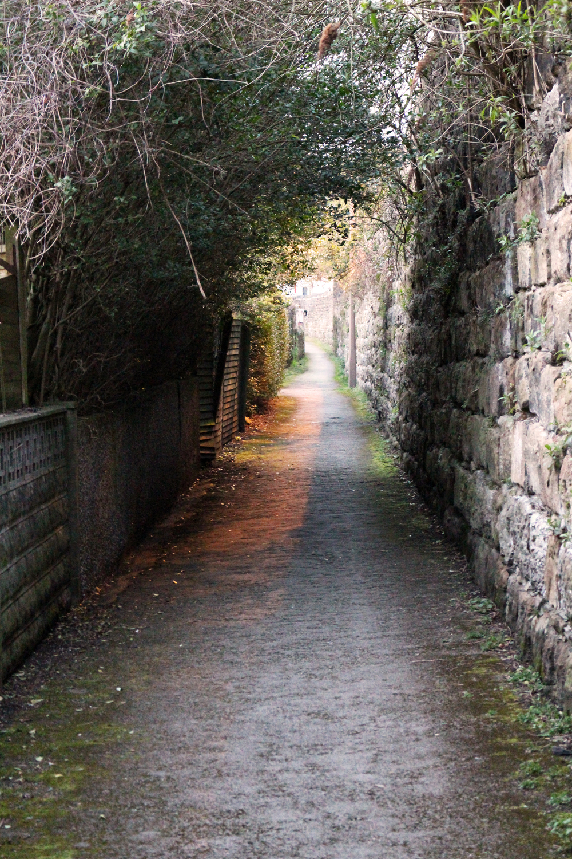 tunnel-path