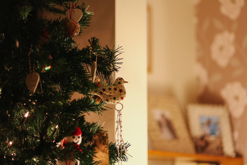 1/52 - A quick snap of our Christmas tree using my new camera (Canon 5D MkII)