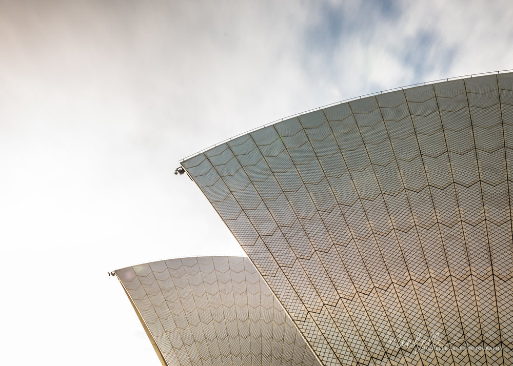 The sails of the Sydney Opera House in detail, NSW