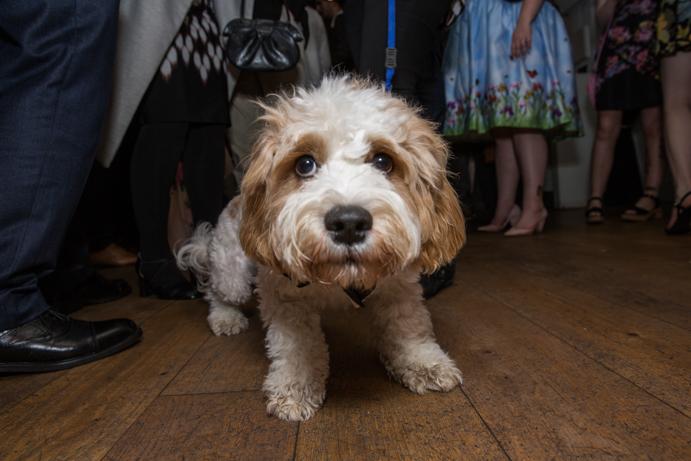 Bristol Wedding Photographer - G+R Gallery - The Berkeley Square Hotel Wedding-305.jpg