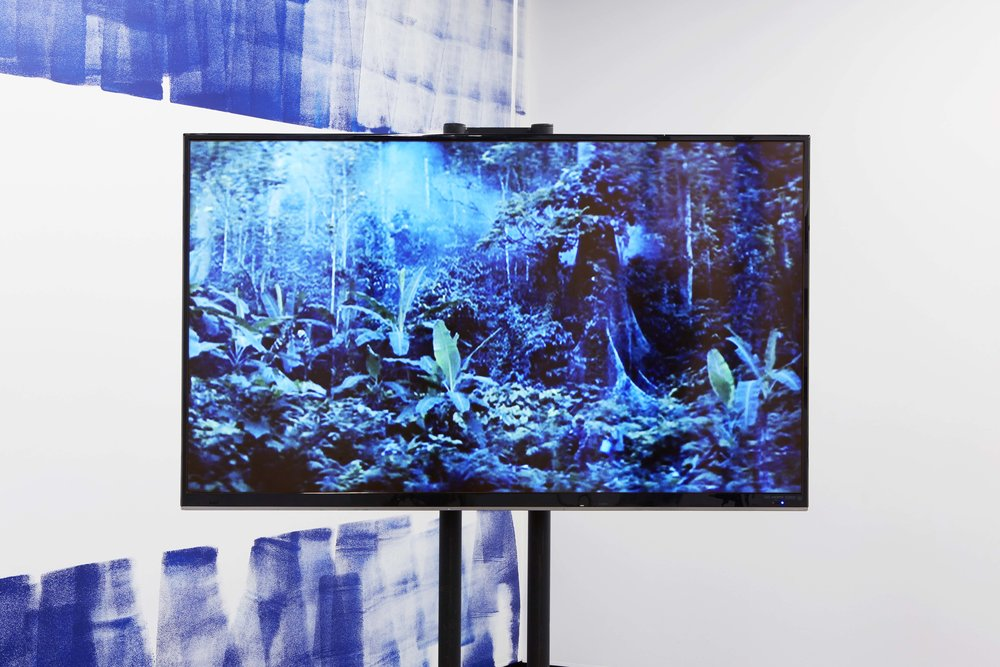Coconut Republic , 2017, single-channel video with sound, 8 minutes 32 seconds, installation view,  Coconut Republic , Firstdraft, Sydney. Editor: Kate Blackmore. Photo: Zan Wimberley. Copyright JD Reforma