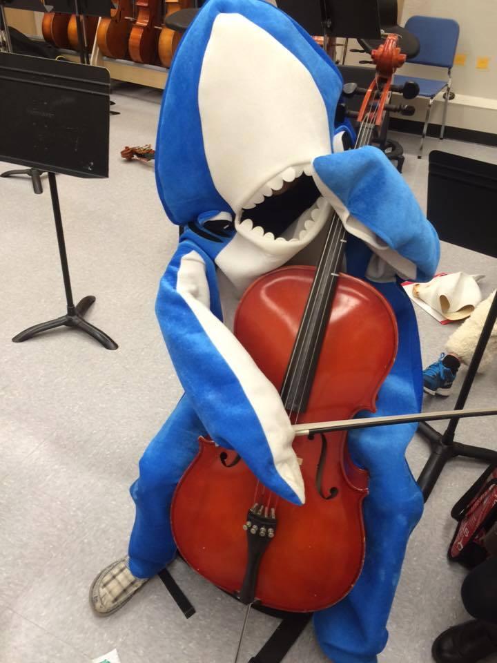 Shark-cello.jpg