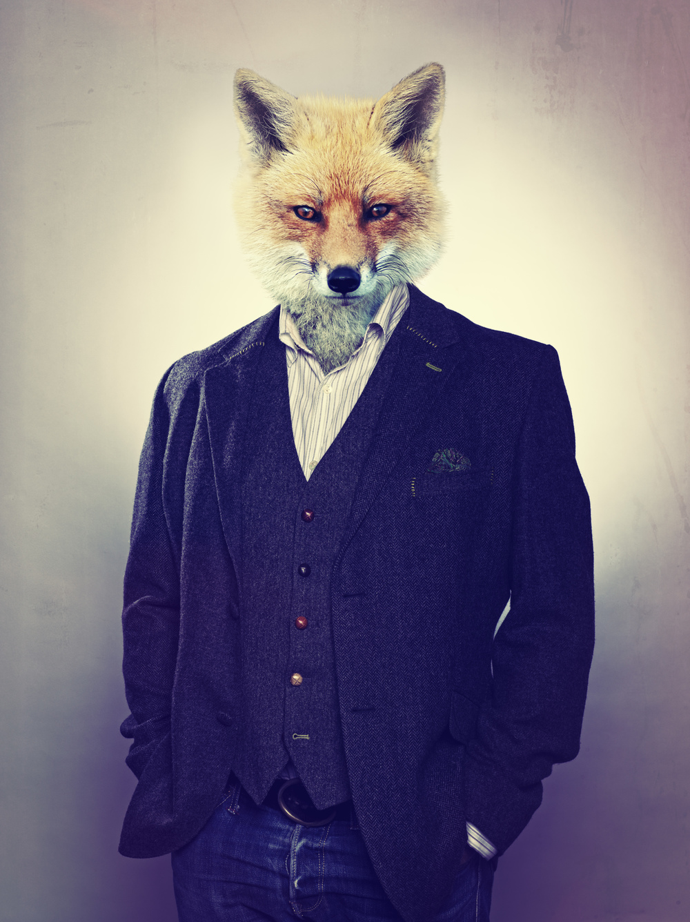 FOX_ANIMAL_HEAD.jpg