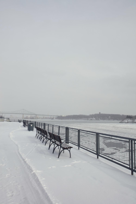 Montreal 8.jpg