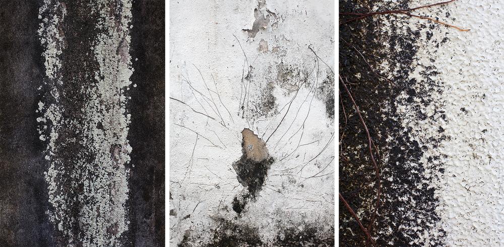 Marks (2014)