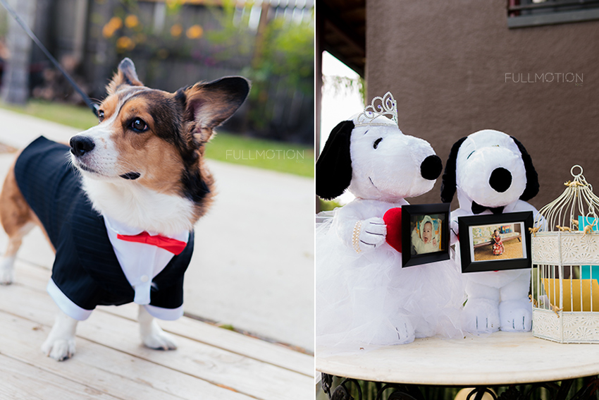 Kady and Frank's Wedding - Baby Photo Decorations and Their Dog Ralph