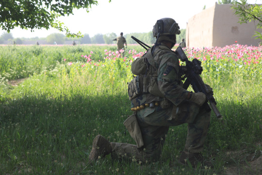 A Marine with U.S. Marine Corps Forces, Special Operations Command (MARSOC) provides security during a joint patrol with Afghan National Army Special Forces soldiers in Watan village, Helmand Province April 3, 2012.