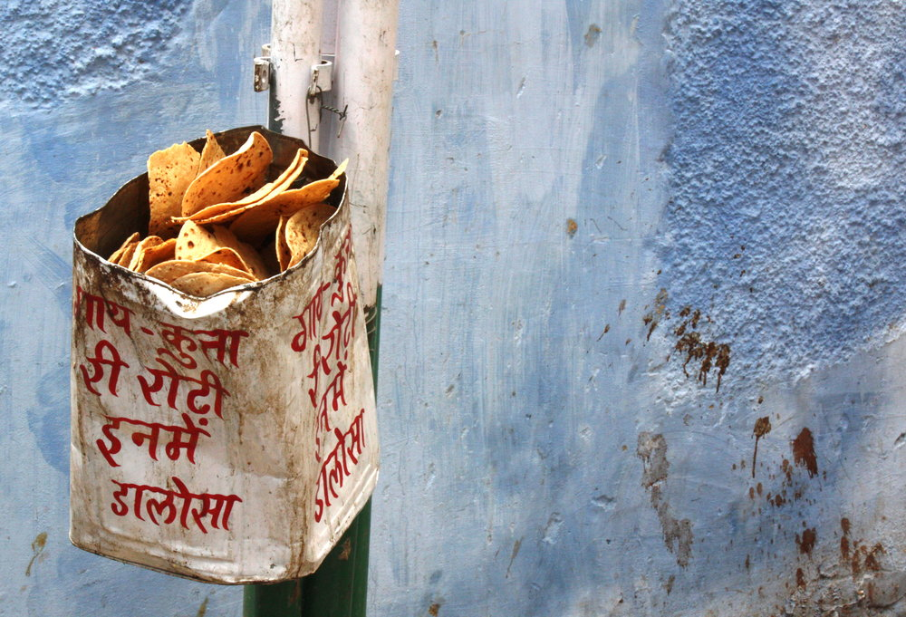One mans trash, Jodpur, 2018