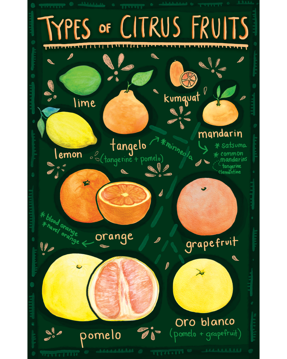 citrusposter copy.png