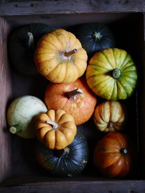 "Check out my ""For Love of Fall"" board on Pinterest for more ideas"