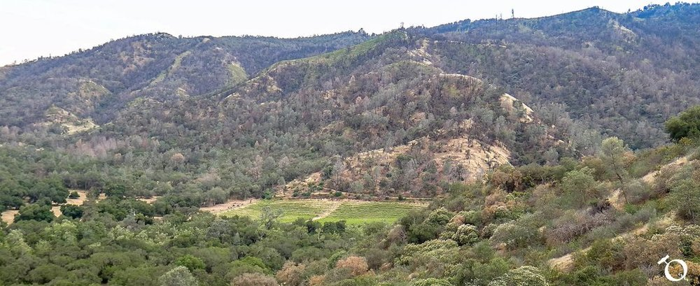 Mount Harlan
