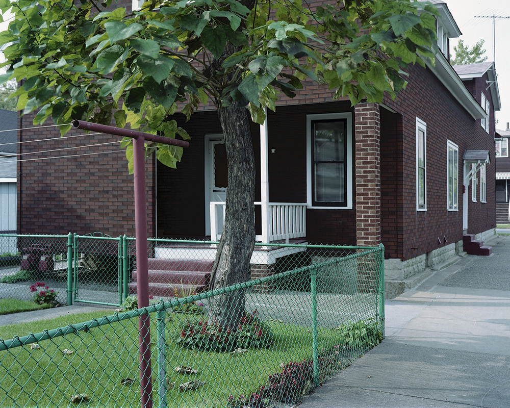 Green Fence Backyard, Whiting IN 1987.jpg