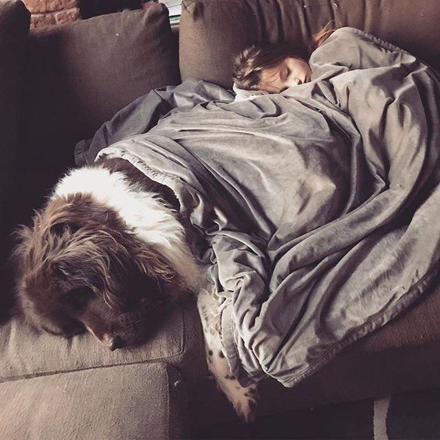 Morning Cuddles! #notreadytowakeup #coralielovesbruce #citygirlcoralie #sirbruceofchicago #gentlegiant #newfoundland  #dogsofinstagram #dogsofchicago #landseer #cuddlebuddies