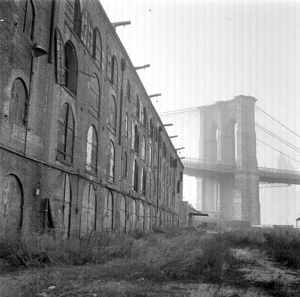 dumbo_1969_empire_stores_600.jpg