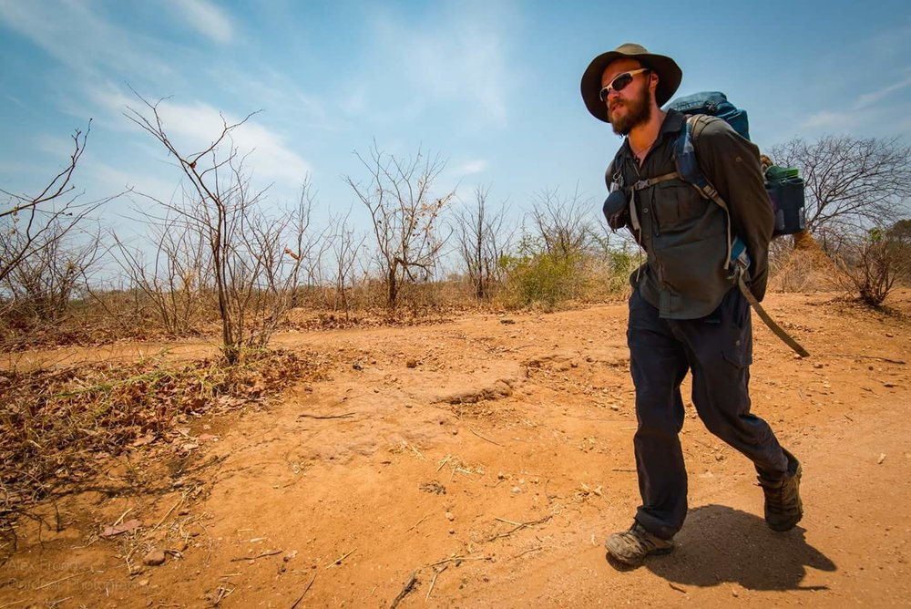 The dry and dusty paths that run along the Zambezi's bank. Where temperatures can often reach 50°C. Credit: Alex Frood