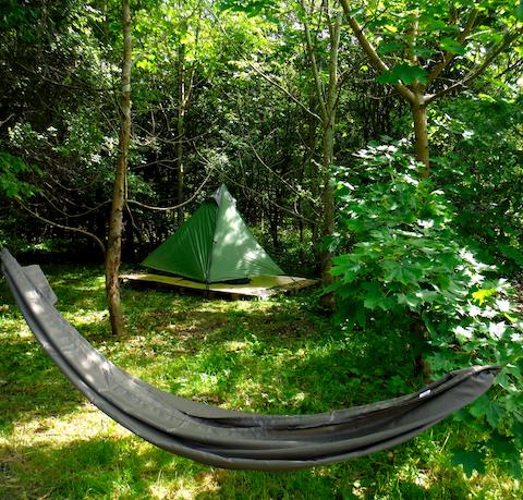 Tipi woods.jpg