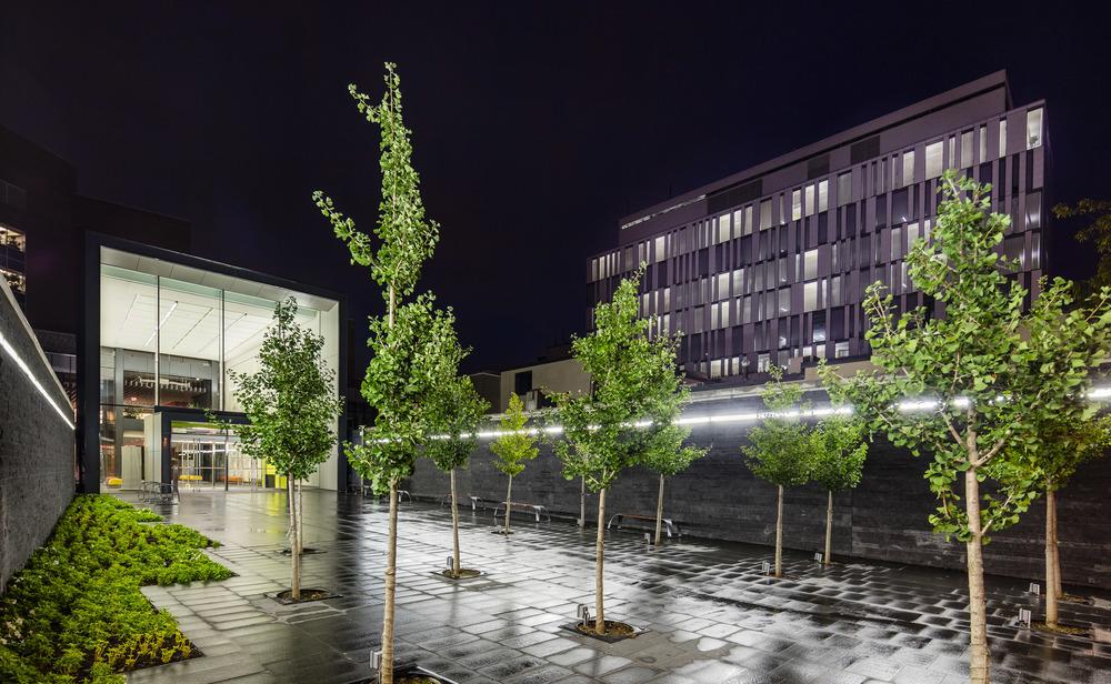 Brampton City Hall Expansion