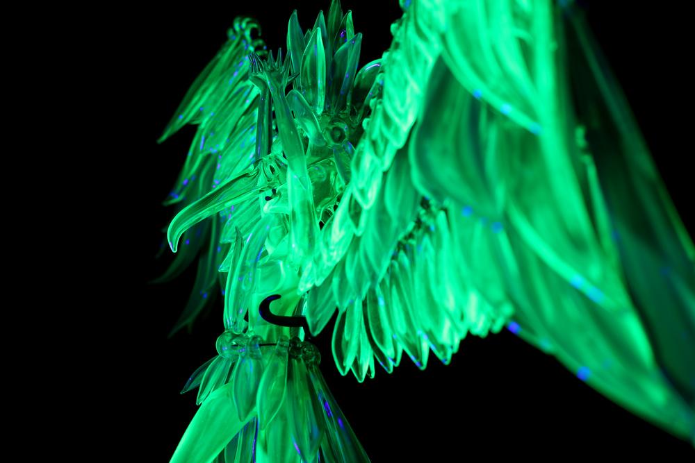 lightseeker-23.jpg