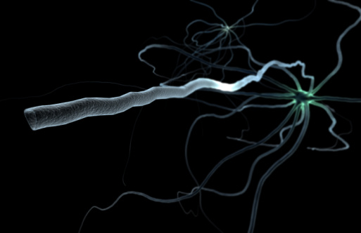 Image of a multipolar neuron with a close up of its axon; a 'grey cell'