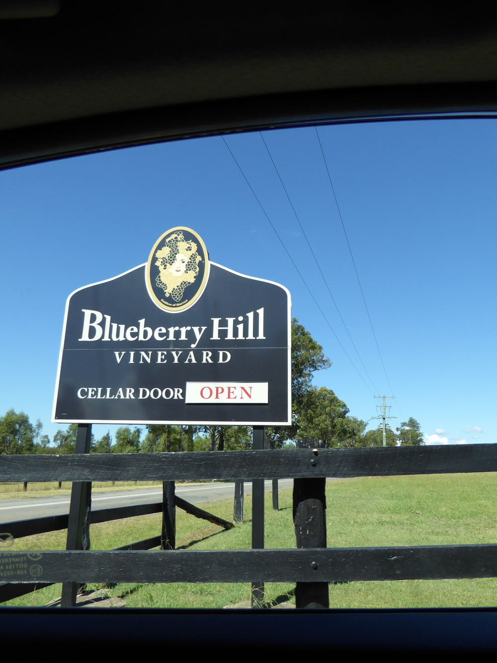 Blueberry Hill Vineyard