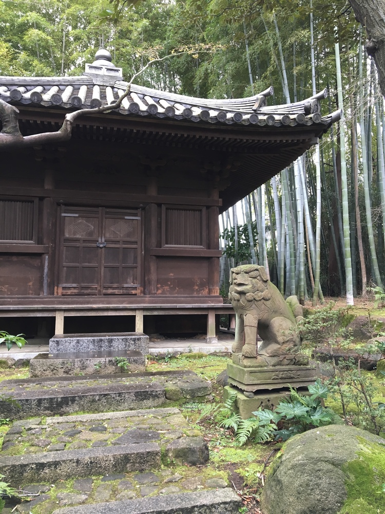 Tea house at Nezu Museum
