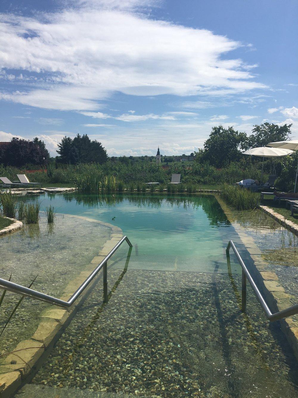 Natural bathing pond at Loisium