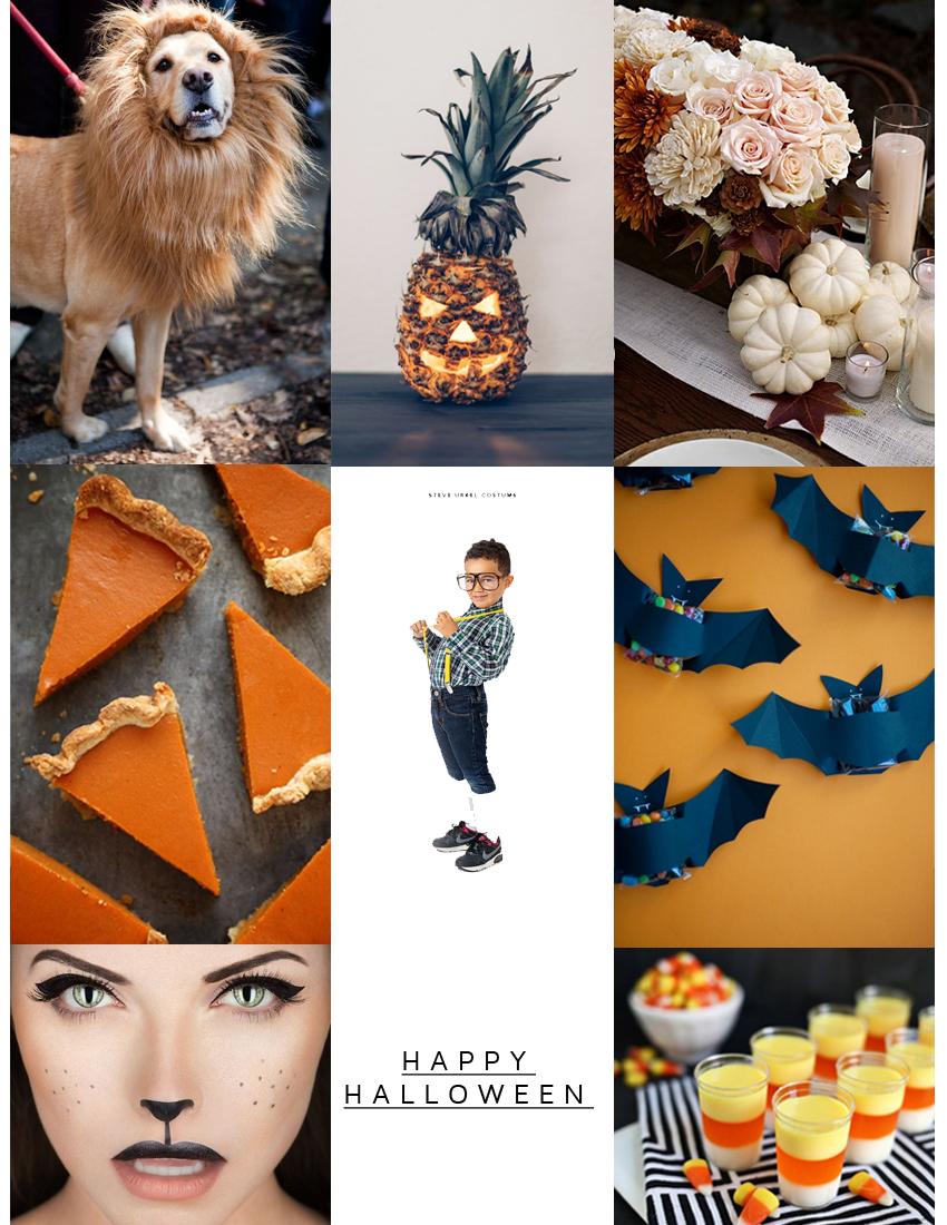 Style Fragment Happy Halloween 2014
