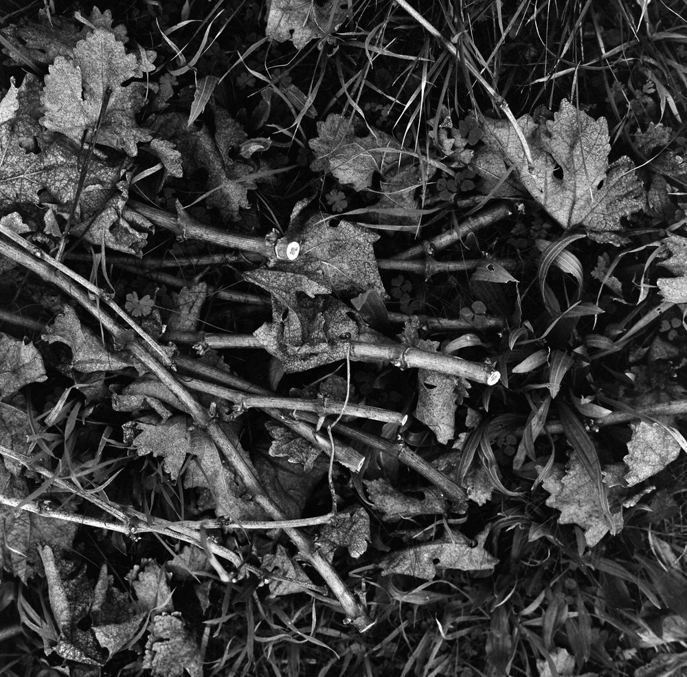 FILM02_18 39.jpg