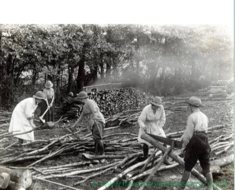 Women Doing farm work (courtesy of Herefordshire history org uk).PNG