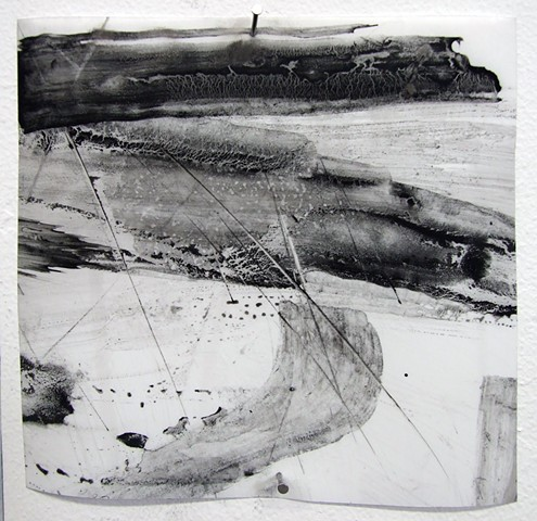 """Ab 20,"" 2012, charcoal and gesso on mylar"