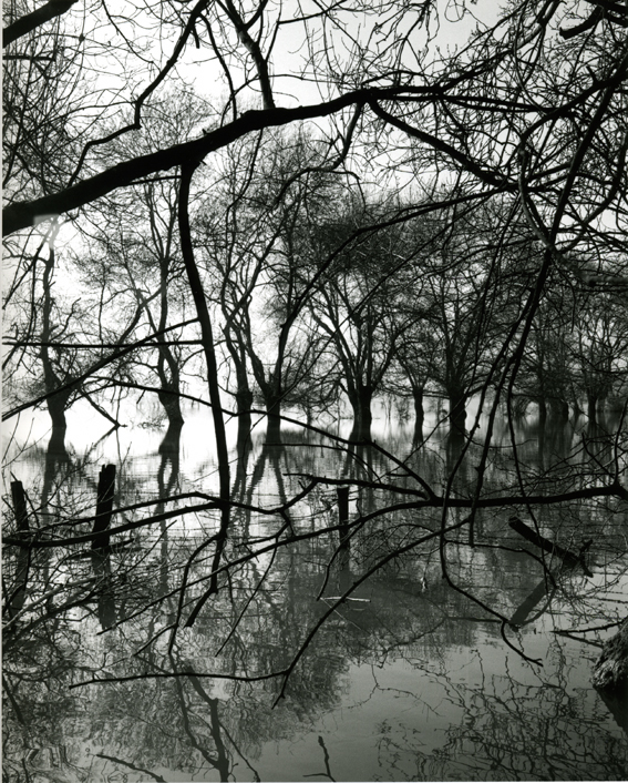 """L'eau Grande 12,"" 2002, photograph, 24x20 in."