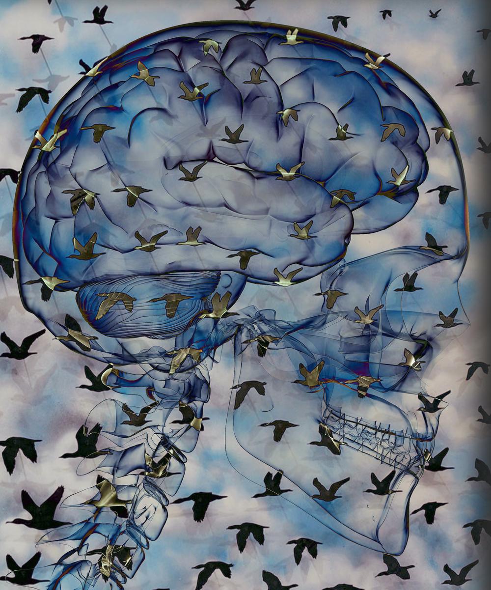 """I Am,"" 2013, lenticular technique on light box, 39x47 in."