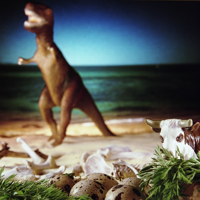 """Cow on the Paleolithic Beach,"" 1998, c-print, 19x17.5 in."