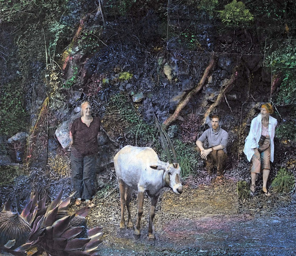 The Elusive White Oribi, 2015, hand-colored collaged photography by Vivian van Blerk.jpg