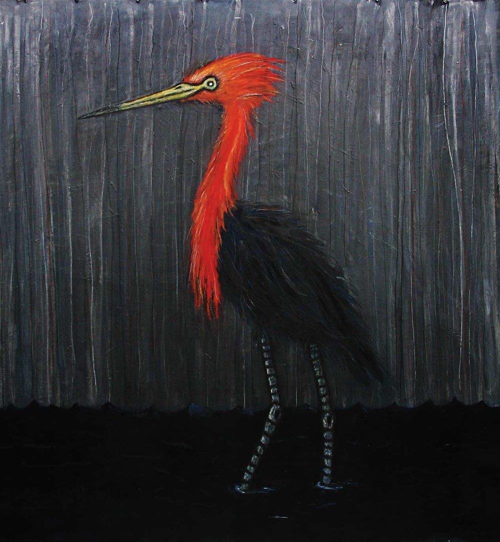 Reddish-egret[1].jpg