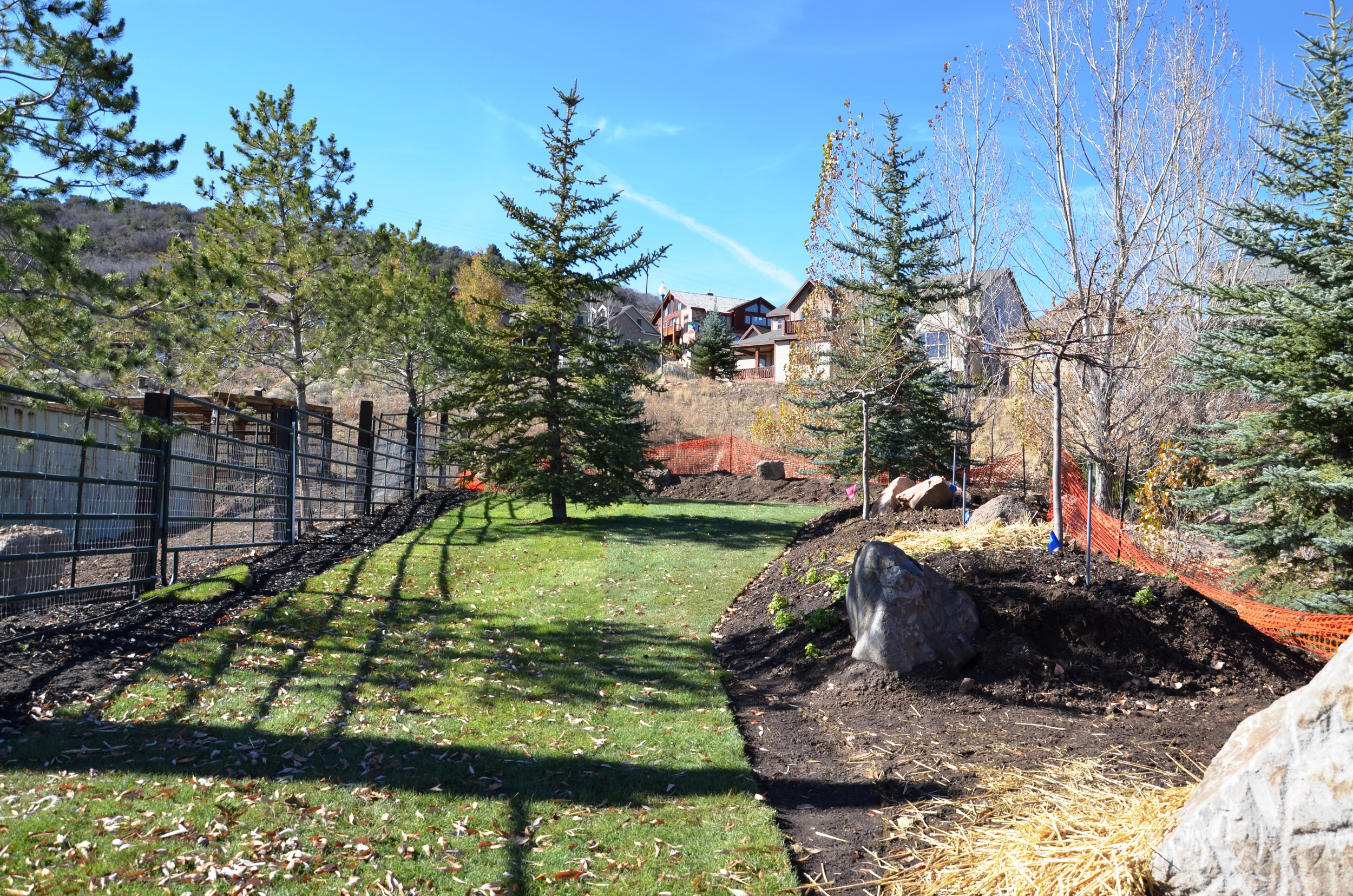 New sod, dirt and trees have been planted on the sides of the farm to restore the beauty of the surrounding space.
