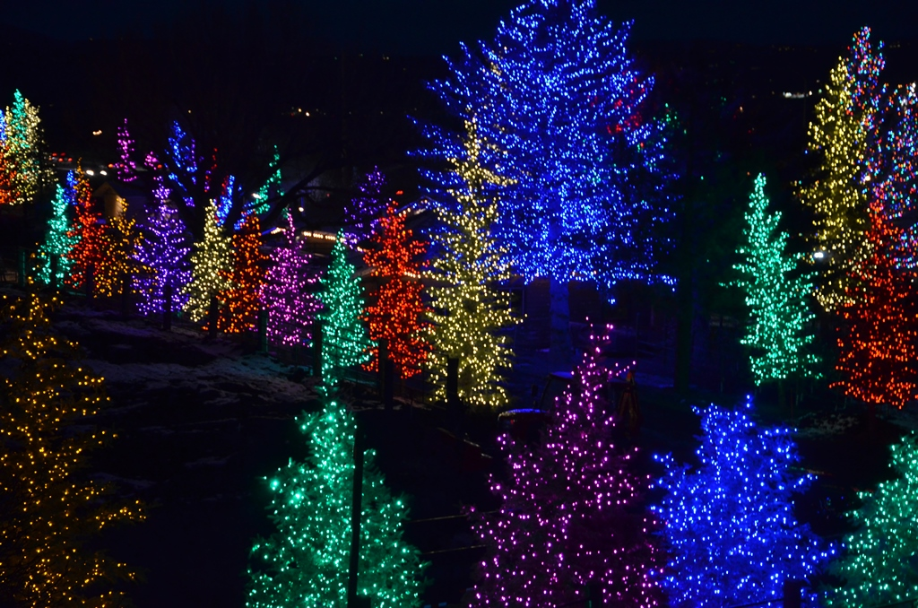 Holiday Lights at Bill White Farms