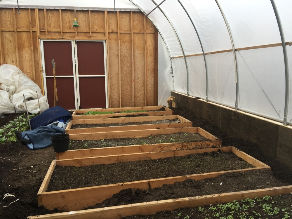 Winter Prep for Green Houses